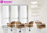 شعبيّة [هيغقوليتي] صالون أثاث لازم مرآة حل صالون كرسي تثبيت ([ب2041])