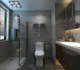 고품질 도와 시멘트 디자인 Foshan 제조 600X600mm (BMC07)에서 시골풍 사기그릇 지면 도와