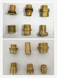 La guarnición recta de cobre amarillo del acoplador con la compresión termina (YD-6056)