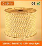 Striscia bianca di tensione AC220V SMD5730 LED di luce del giorno ultra luminosa