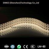 strisce di 12V/24V IP20 IP62 IP65 IP67 IP68 5050 LED