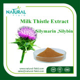 Polvo del extracto de Silymarin del extracto del cardo de leche de la fuente de la fábrica