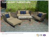 Mobília tecida & de alumínio da correia, sofá ao ar livre do jardim (TG-6004)