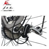 MTB Saddle 250W Brushless Motor 36V Electric Dirt Bicycle (JSL037G)