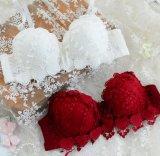 Conjunto de la ropa interior de las bragas de señora Women Sexy Lingerie Sleepwear