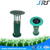 Hot Selling Design mais novo Low Carbon Solar Decoration Garden Light in Green