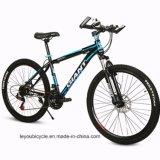 Bici de montaña de la bici del camino del carbón de la alta calidad (LY-A-13)