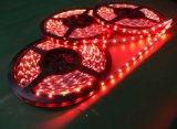 Alta tira SMD 5050 30 LED del brillo LED del lumen por el contador