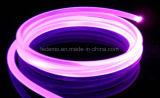 Lampe au néon extérieure de Tybe de câble de DEL mini