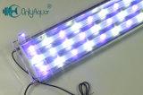 Lumières d'aquarium de l'utilisation White+Blue DEL d'eau salée