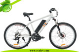 26inch E-Bicycle avec Middle/Central Motor (PE-TDE07Z)