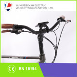 bici eléctrica de la bici del remiendo de la manera 250W