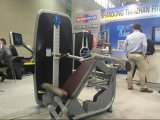 スポーツFitnessかCommercial Gym Equipment/Abdominal Exercise Machines/Back Extension Tz9006
