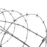 Fornitore esperto della Cina di recinzione del filo (ZDBW)