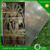 Spiegel polierte geätzte Edelstahl-Platte für Höhenruder färben