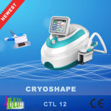 Perda de peso emagrecimento rápido Cryolipolysis Product for Salon Beauty