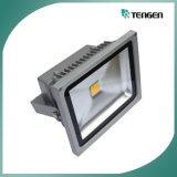 Luz del molde, reflector 1000W del LED