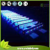 Drahtloser Meister DMX512 RGBW (4 1) Jahr-der Garantie in der LED-Wand-Unterlegscheibe-With3