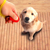 Haustier-Hundekatze Clicker Ausbildungshilfe-Gehorsam für Trainings-Welpen-Katze-Vogel-Pferden-sogar Kaninchen