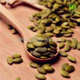 Nuevos núcleos de los gérmenes de calabaza de la cosecha y de los gérmenes de calabaza con el AAA de calidad superior para la venta