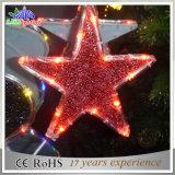 屋外の装飾的なワイヤー装飾LEDのクリスマスの星ストリングライト