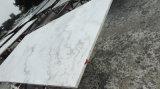 Slab, Tile, Sculpture를 위한 자연적인 Castro White Marble