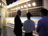 2016 MPPT 관제사 온-오프 격자 10kw를 가진 태양 변환장치를 진행했다