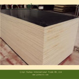 싱가포르 Market를 위한 Competitive Price에 까만 Film Faced Plywood