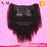 De Kroezige Krullende Klem van Afro in Klem van het Menselijke Haar van de Uitbreidingen van het Menselijke Haar de Maleise Maagdelijke Afrikaanse Amerikaanse in Ins van de Klem van Uitbreidingen 12-30 Krullende