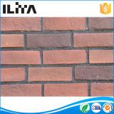 Stone Impiallacciatura, Stone Mattonelle, decorazione del rivestimento della parete, Artificial Culture Pietra, mattone artificiale delle mattonelle (YLD-18037)