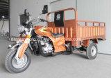 Triciclo de la motocicleta de tres ruedas de la fábrica 200cc