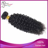 7AブラジルのKinky Curly Cheap Vigin Remy Human Hair Weft