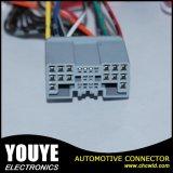 Câble équipé de qualité et constructeur dignes de confiance de harnais de fil