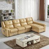 Spitzenkorn-Leder-Speicher-Sofa (621#)