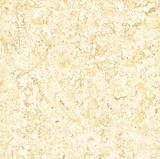 Hotel doble de piedra Bj8801A del departamento del mercado de la casa del azulejo del cargamento del platino
