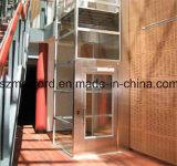 실내 엘리베이터 상승 홈을 지는 작은 3명의 사람 안전 유리 오두막