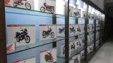 Élément de filtre à air de pièces de moto pour le scooter 2t de la fermeture éclair 50 de Piaggio