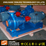 물 Pump 또는 Centrifugal Pump/End Suction Pump (이다)