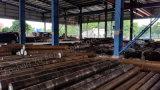Barra dell'acciaio/strumento Steel/Flat della muffa