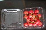 フルーツ(食品包装)のための環境に優しい健康のゆとりプラスチックPPのボックス