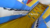 Het commerciële Reuze Opblaasbare Water glijdt de Dia van Bouncy van het Water (rc-016)