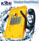 Acero inoxidable, Manos libres Telecom emergencia Locutor con protección contra la intemperie mejorada