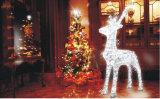 정부 거리 훈장 크리스마스 LED 빛