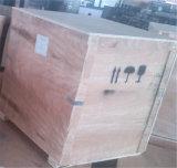 Doppelter Raum-Vakuumverpacker für das Vakuumverpacken (GRT-DZQ4002SA)