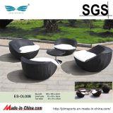 Rattan della mobilia del giardino/mobilia del rattan impostata (ES-OL047)