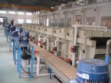 鋼線の表面のピクルスにし、リン酸で処理する(boronizing)生産ライン