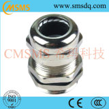 NylonCable Glands (PG/MG Typ)