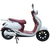 Due Wheel Scooter con Pedal in America del Nord
