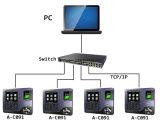 Atención biométrica del tiempo de la huella digital del programa de lectura del tiempo de la tarjeta inteligente con el TCP/IP