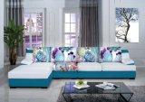 Modernes echtes Leder-Sofa